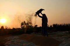 Agriculteur travaillant dans un domaine de riz dans le coucher du soleil Photo stock