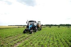 Agriculteur vérifiant le gisement de soja La technologie unique de l'élevage Image libre de droits