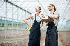 Agriculteurs avec le comprimé dans la serre photos libres de droits