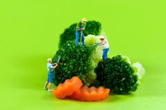 Agriculteurs de figurine moissonnant le brocoli Image libre de droits