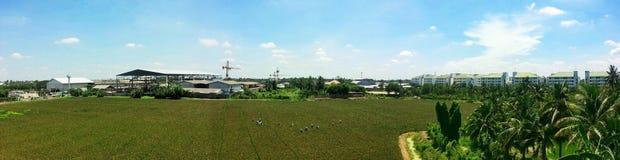 Agricultor em Tailândia Imagens de Stock