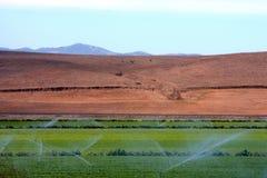 Agricultura Imagenes de archivo