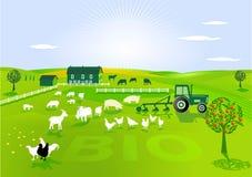 Agricultura biológica Foto de archivo
