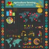 Agricultura, cultivando infographics Imagenes de archivo