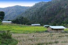 Agricultura de Arunachal Pradesh Fotografia de Stock Royalty Free
