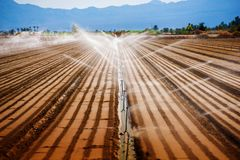 Agricultura de California imagen de archivo libre de regalías