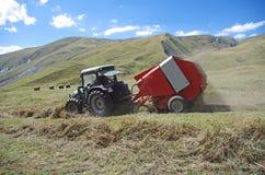 Agricultura de la montaña Fotografía de archivo