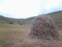 Agricultura de la montaña de la naturaleza Imagen de archivo libre de regalías