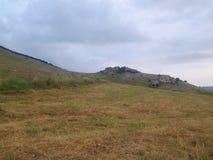 Agricultura de la montaña de la naturaleza Fotografía de archivo libre de regalías