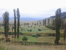 Agricultura de la montaña de la naturaleza Foto de archivo