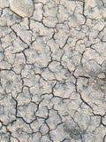 Agricultura do clima da crise das secas da escassez da água imagem de stock