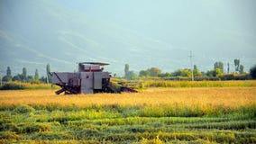 Agricultura e ceifeira, video estoque