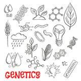 Agricultura e iconos genéticos del bosquejo de la tecnología libre illustration