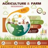 Agricultura e infographics del cultivo Foto de archivo libre de regalías