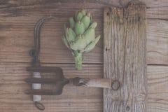 Agricultura ecológica: Alcachofa y utensilios de jardinería viejos Fotos de archivo libres de regalías