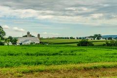 Agricultura em Lancaster, PA do campo do celeiro da exploração agrícola do país de Amish fotos de stock royalty free