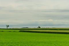 Agricultura em Lancaster, PA do campo do celeiro da exploração agrícola do país de Amish fotografia de stock royalty free