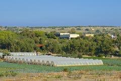 Agricultura en Malta fotografía de archivo