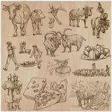 Agricultura, fabricación del queso - sistema dibujado mano del vector Foto de archivo libre de regalías