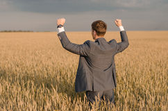 Agricultura, fazendeiro feliz que gesticula no campo de trigo pronto para colher, com mãos e polegar acima Fotos de Stock
