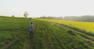 Agricultura, granjero de sexo masculino que camina en pista sobre campo agrícola mientras que usa la tableta digital almacen de metraje de vídeo