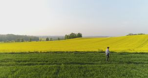 Agricultura, granjero de sexo masculino que camina en pista sobre campo agrícola mientras que usa la tableta digital almacen de video