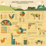 Agricultura, infographics da produção animal, ilustrações do vetor Imagem de Stock