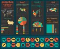Agricultura, infographics de la cría de animales, ejemplos del vector Imágenes de archivo libres de regalías