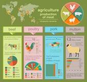 Agricultura, infographics de la cría de animales, ejemplos del vector Imagen de archivo libre de regalías