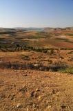 Agricultura marroquí fotografía de archivo