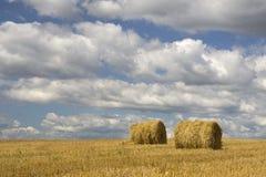 Agricultura - monte de feno imagens de stock