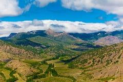 Agricultura nas montanhas Cultivando o conceito Uvas crescentes em montes Paisagem sazonal imagem de stock royalty free