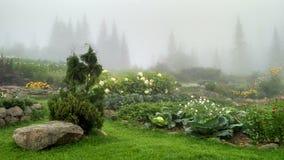 Agricultura orgánica en las montañas Fotos de archivo libres de regalías