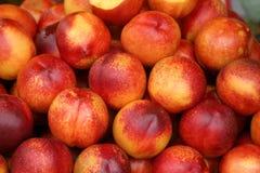 Agricultura-pêssegos foto de stock royalty free