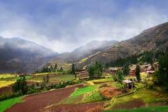 Agricultura peruana en las altas montañas Imagen de archivo libre de regalías