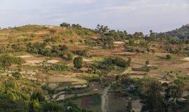 Agricultura tradicional de la terraza de la gente de Dorze Cerca del pueblo de Hayzo fotos de archivo