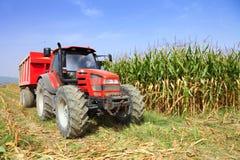 Agricultura, trator de cultivo Fotografia de Stock