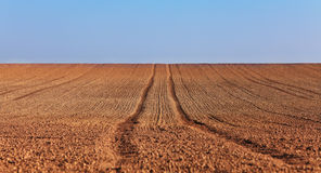 Agricultural abstract. Tracks of a tractor in a bare field in spring Stock Images