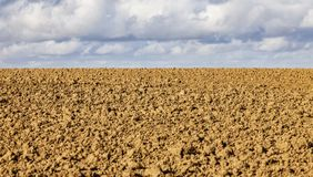 Agricultural Abstract Stock Image