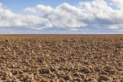Agricultural Abstract Stock Photography