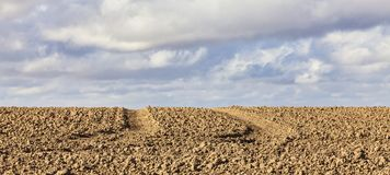 Agricultural Abstract Royalty Free Stock Images