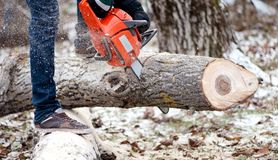 Agricultural activities - Man cutting trees with chainsaw. And tools in the garden during winter royalty free stock images