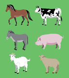 Agricultural animals. Royalty Free Stock Images