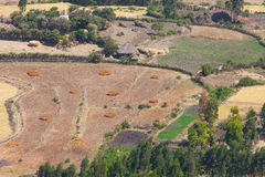 Agricultural area in Ethiopia Royalty Free Stock Photos