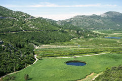 Agricultural area in Neretva river delta Stock Images