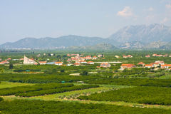 Agricultural area in Neretva river delta in Croatia Stock Photos