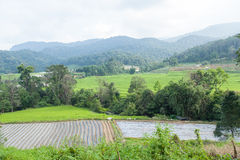 Agricultural areas in the mountains Stock Photo