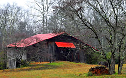 Agricultural barn and forest Royalty Free Stock Photography