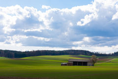 Agricultural breathtaking landscape Royalty Free Stock Photography