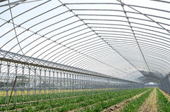 Agricultural building for farming Stock Images